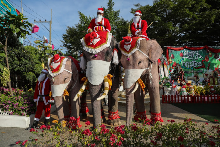Due to the recent spike in Covid-19 spreading in Thailand, the elephants distributed masks to students and passersby instead of traditional gifts.