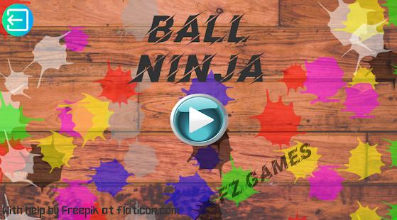 Ball Ninja - náhled