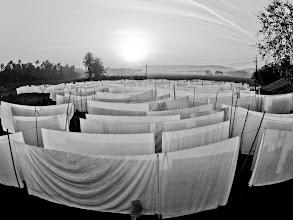Photo: white and black