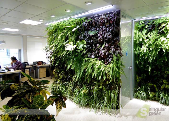 Conjunto de jardines verticales de interior para oficinas for Jardines verticales ecuador