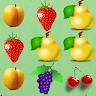 com.gsoftteam.fruitbuster