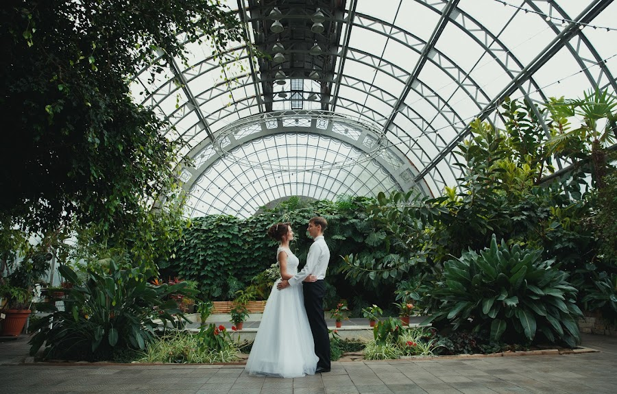 Wedding photographer Aleksandr Pavlov (aleksandrpavlov). Photo of 21.11.2017