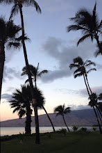 Photo: Maui sunset http://ow.ly/caYpY