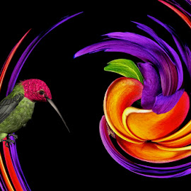 Hummingbird and flower swirl. by Inge Hawkins - Digital Art Animals ( #abstract, #flower, #digital_art, #bird )