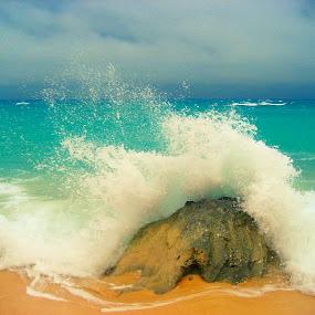 Wave by Julia Nicely - Nature Up Close Rock & Stone ( wave, sea, rock, ocean, bermuda )