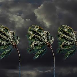 Big Wind Blowing by Joseph Vittek - Digital Art Places