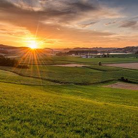 Summer sunset by Peter Zajfrid - Landscapes Sunsets & Sunrises ( field, sky, slovenija, sunset, slovenia, beams, pwcsunbeams-dq, sun )
