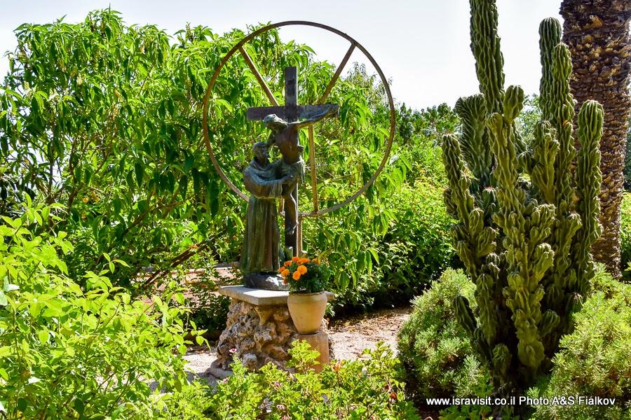 В саду церкви Преображения Господня на горе Фавор. Экскурсия по Святым местам Нижней Галилеи. Израиль.