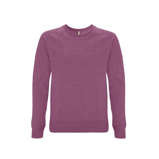 Unisex Salvage Organic Sweatshirt (Male)