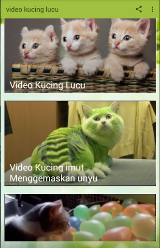 Download Video Kucing Lucu Terbaru Google Play Softwares