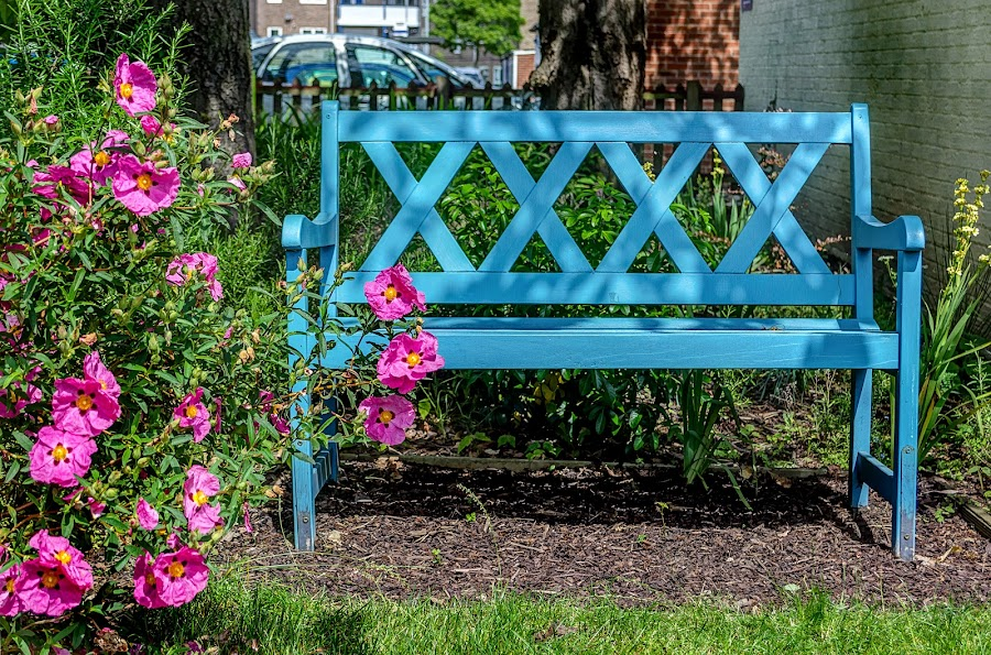 Take a Seat by Heather Ryder - Artistic Objects Furniture ( bench, blue, seat, flowers, garden,  )