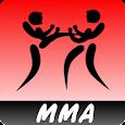 MMA training system