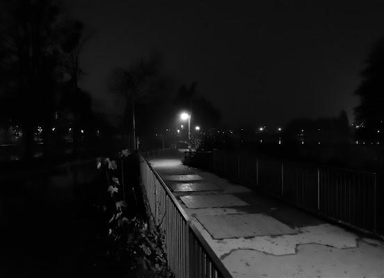 Un ponte verso la nebbia di Alberto Giudice
