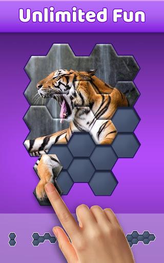 Hexa Jigsaw Puzzleu2122  screenshots 1