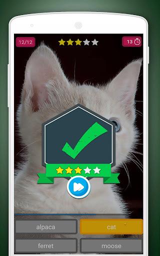 Scratch Game: Animals Quiz 2.2 screenshots 7