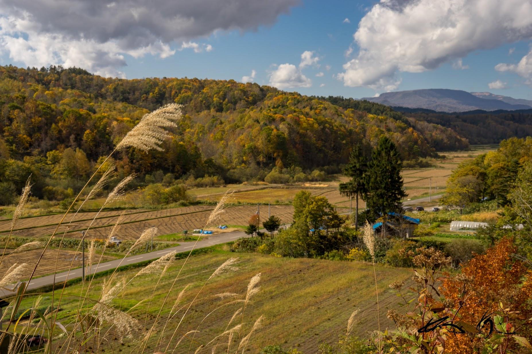 山々の秋模様