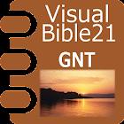 VB21 GNT or GNB/TEV icon