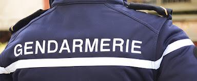 Immobilier : La FNAIM s'associe à la gendarmerie pour lutter contre la délinquance !