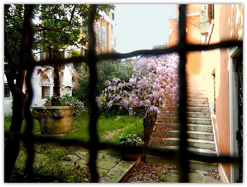 Giardino nascosto, Venezia di lucaldera