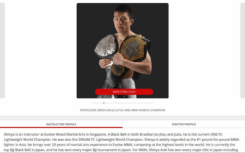 Скриншот Evolve MMA