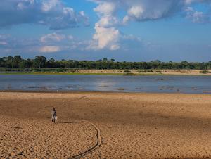 Rufiji delta landscape