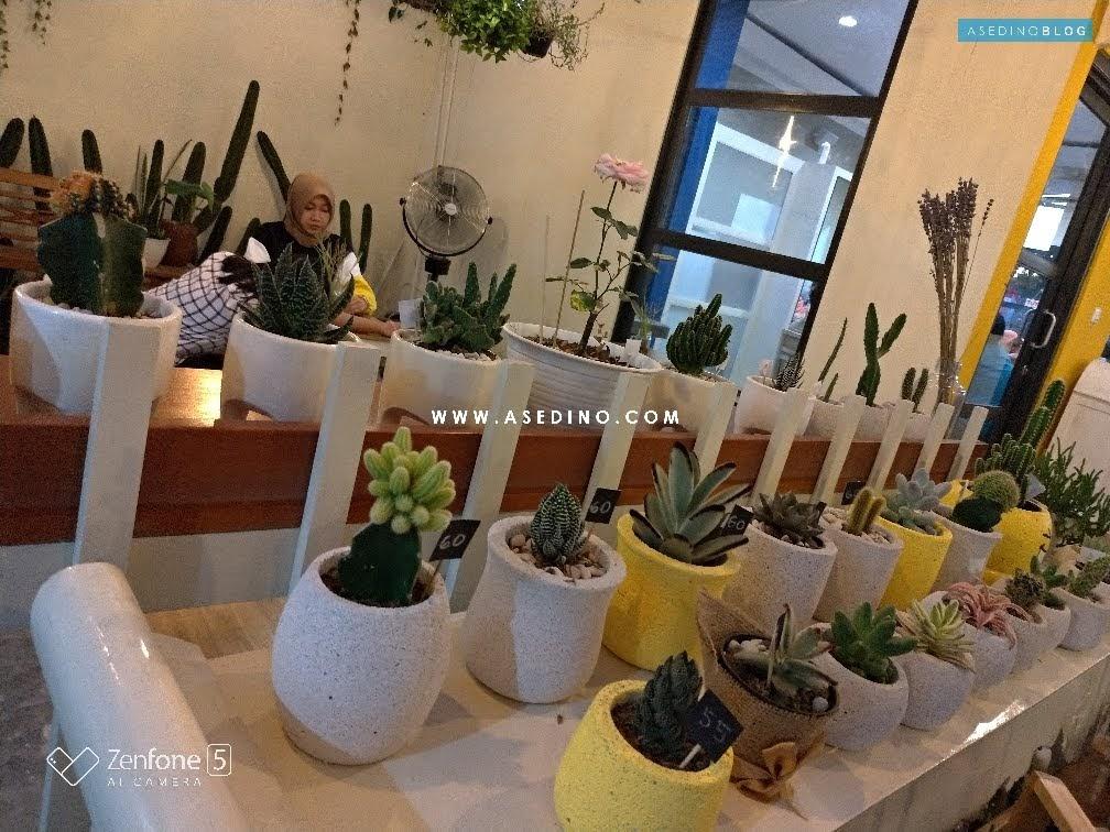 Sudah Kenal Belum Sedjiwa Cafe Manahan Solo Asedino