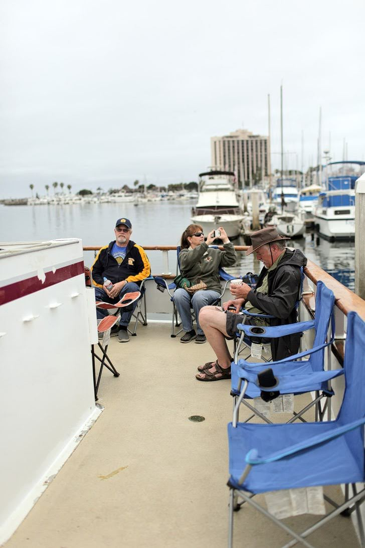 Whale Watch with Pacific Nature Tours - San Diego Things to Do.