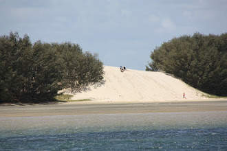 Photo: Year 2 Day 196 - Sand Dunes on South Stradbroke Island