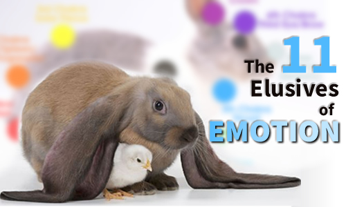 11 Elusives of Emotion