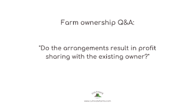 Do the arrangements result in profit sharing with the existing owner?