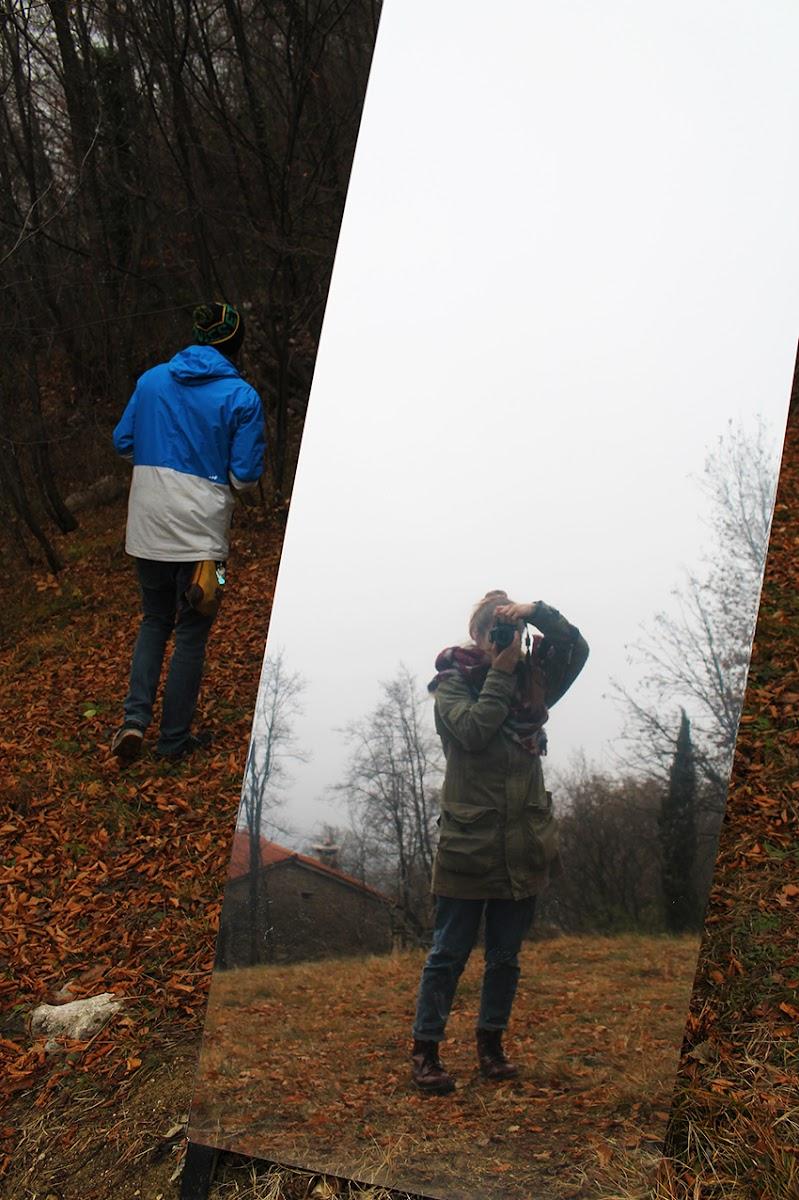 Riflesso nel bosco di Aliscia