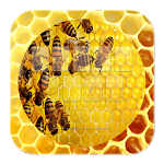 Hive Bee Keyboard
