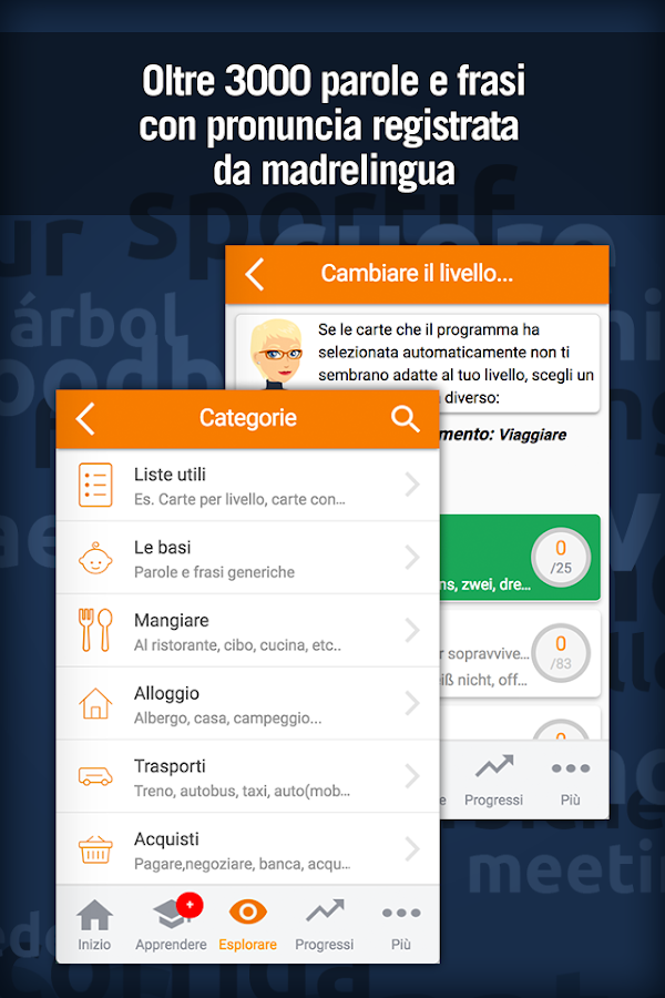 Imparare il Tedesco- screenshot
