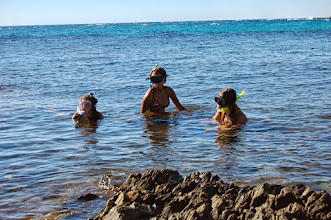 Photo: http://www.corsicacamping.siracasa.de/