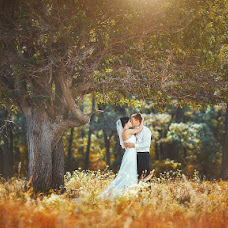 Wedding photographer Dmitriy Buyanskiy (dimabl). Photo of 22.02.2013