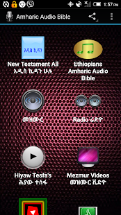 Amharic Audio Bible- screenshot thumbnail