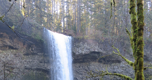Silver Falls State Park Hike - Feb 2017