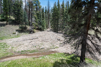 Photo: Washout from burned hillside; Valles Caldera Nat'l. Preserve
