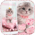 Pink Cute Kitty Cat Theme icon