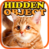 Hidden Object - Cat Sweet Life