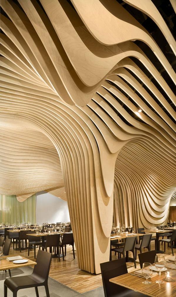 Topographic Ceiling