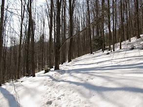 Photo: 06.Sceneria na wpół zimowa.
