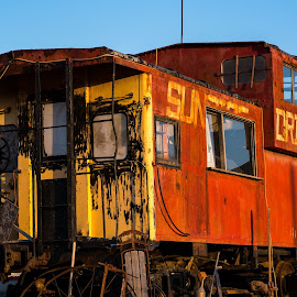 by Mark Hopkins - Transportation Trains