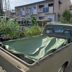 サニートラック  ロングボディーのカスタム事例画像 ゆ~じさんの2020年06月24日23:16の投稿