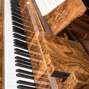 Ivories by James Johnstone - Artistic Objects Musical Instruments ( netherby hall,  )