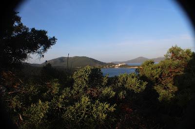 Porto Paradise di francesco chischeddu