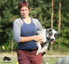 Photo: 5,5 months herding training by Luky Vaňourek the END