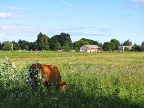 Photo: Sekmadienis, antroji kelionės diena. Kažkur Krekenavos laukuose :)
