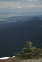 Photo: View from Stark Mountain, Missoula is in the distance