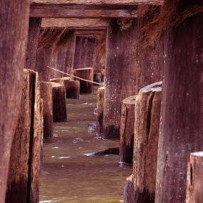 Beneath The Surface by Shawn Vanlith - Landscapes Travel ( water, bridge, pylons )